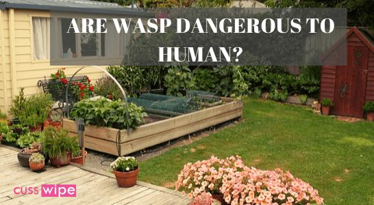 Pest control for home garden
